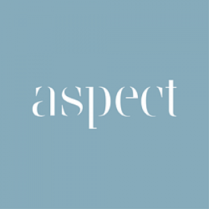 aspect logo_opt